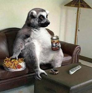 lemure-relax