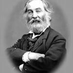 Torta al caffè di Walt Whitman