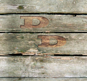 Il progetto Doppia D