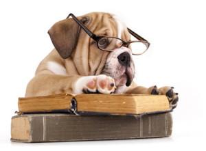 Leggere è un lavoro da cani?